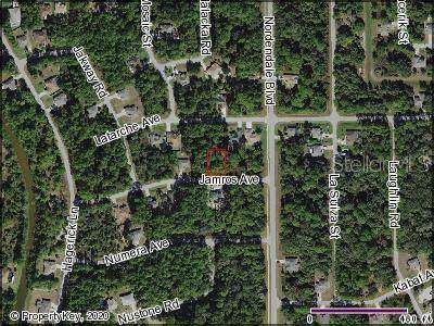 Jamros Avenue, North Port, FL 34288 (MLS #C7433609) :: KELLER WILLIAMS ELITE PARTNERS IV REALTY