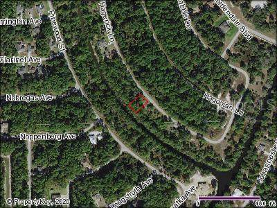 Hagerick Lane, North Port, FL 34288 (MLS #C7433960) :: Lockhart & Walseth Team, Realtors