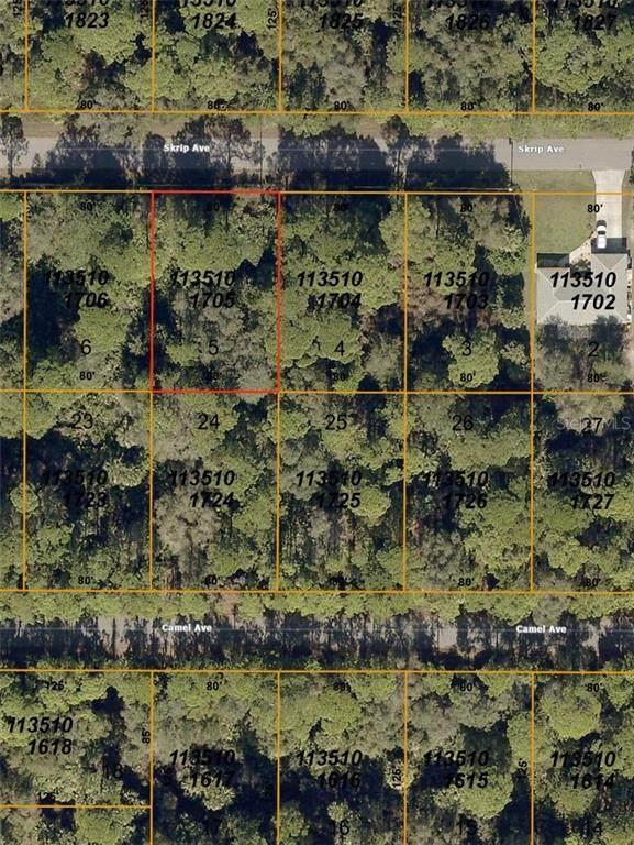 Skrip Lot 5 Avenue, North Port, FL 34288 (MLS #C7434188) :: Griffin Group