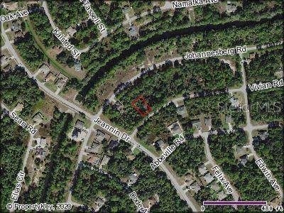 Vivian Road, North Port, FL 34288 (MLS #C7434721) :: Team Buky