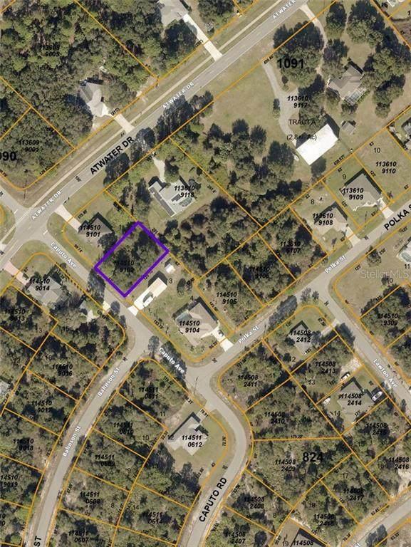 Caputo Road, North Port, FL 34288 (MLS #C7437652) :: Griffin Group