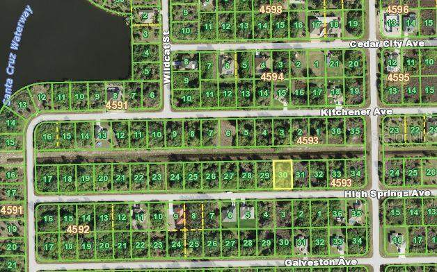 13322 High Springs Avenue, Port Charlotte, FL 33981 (MLS #C7438161) :: Delta Realty, Int'l.