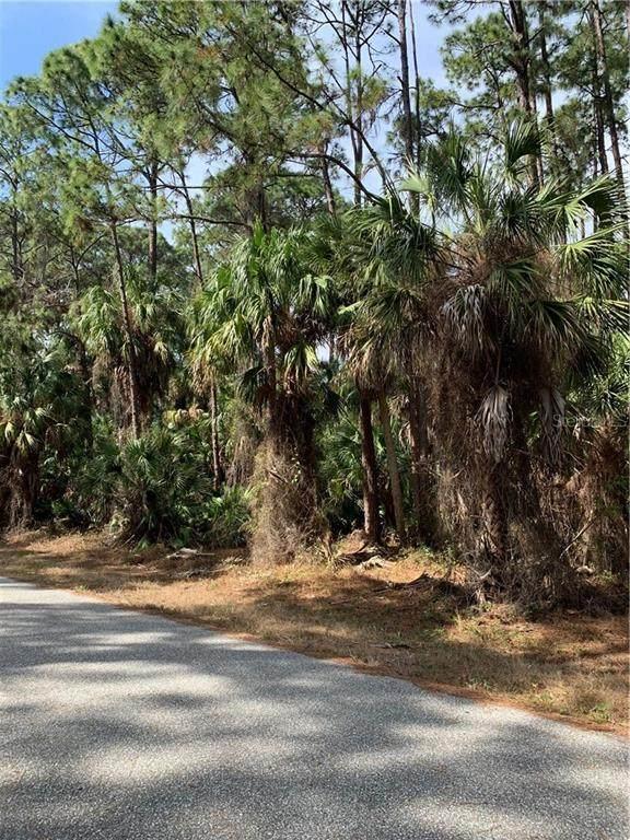 17430 Metcalf Avenue, Port Charlotte, FL 33954 (MLS #C7438740) :: Pepine Realty