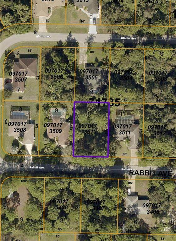 Rabbit Avenue, North Port, FL 34291 (MLS #C7439526) :: Florida Real Estate Sellers at Keller Williams Realty