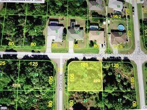 18097 Robinson Avenue, Port Charlotte, FL 33948 (MLS #C7439648) :: The Light Team