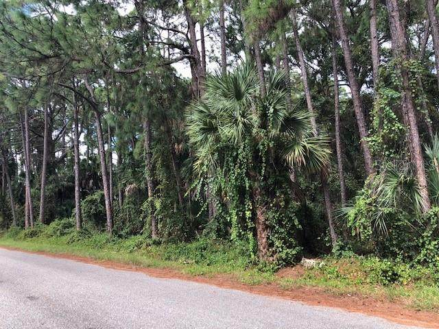 17344 Geddes Avenue, Port Charlotte, FL 33954 (MLS #C7440795) :: Bob Paulson with Vylla Home