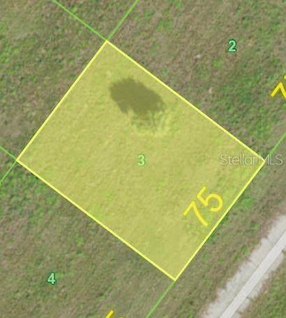 5 Violet Lane, Placida, FL 33946 (MLS #C7441157) :: The BRC Group, LLC