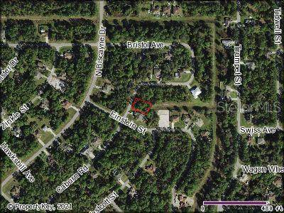 Bristol Avenue, North Port, FL 34291 (MLS #C7441274) :: Armel Real Estate
