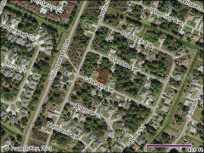 Calahan Avenue, North Port, FL 34288 (MLS #C7441278) :: Vacasa Real Estate