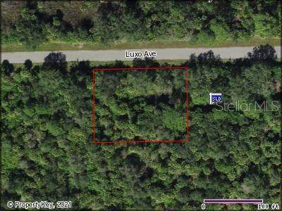 14193 Luxo Avenue, Port Charlotte, FL 33953 (MLS #C7441512) :: Zarghami Group