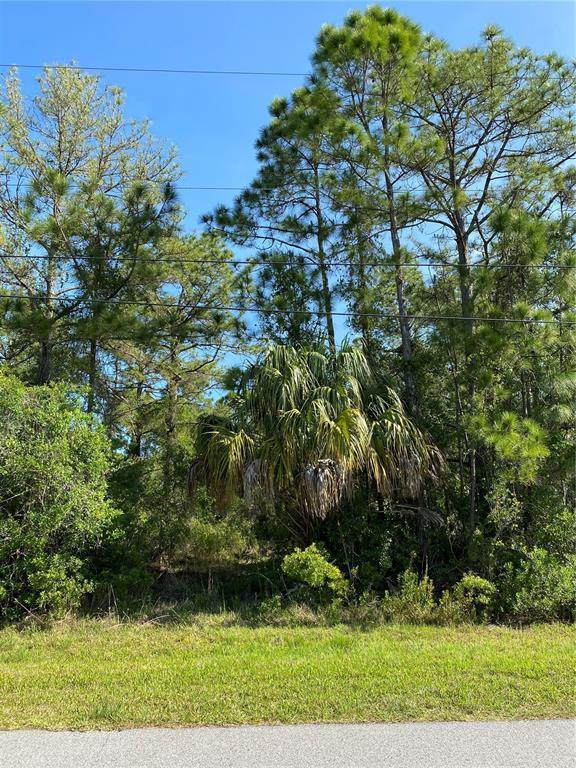Sunburst Avenue, North Port, FL 34286 (MLS #C7441519) :: Premium Properties Real Estate Services