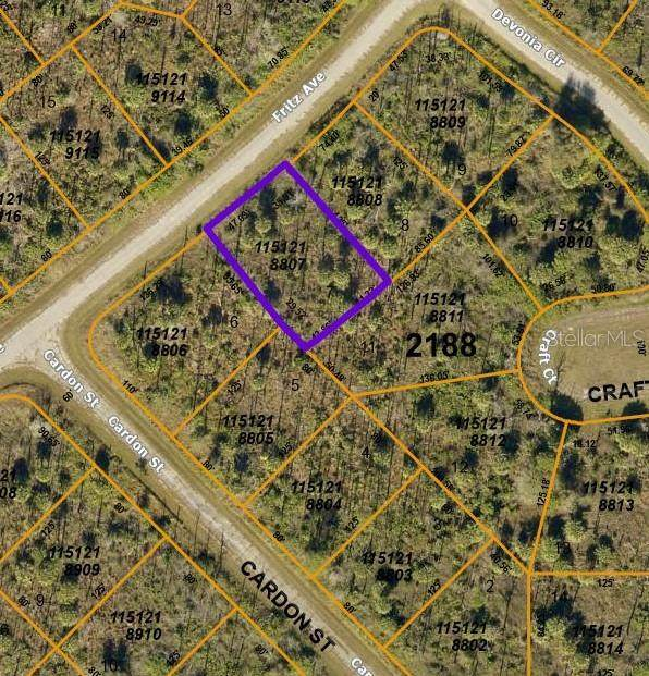 Fritz Avenue, North Port, FL 34288 (MLS #C7441558) :: SunCoast Home Experts