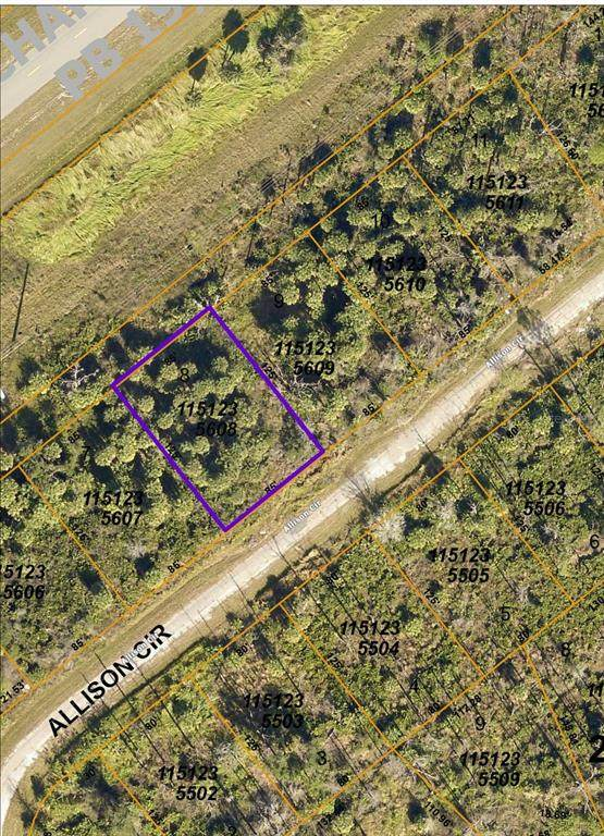 Allison Circle, North Port, FL 34288 (MLS #C7442021) :: Rabell Realty Group