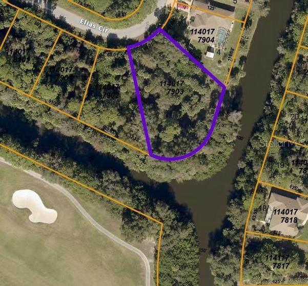Elias Circle, North Port, FL 34288 (MLS #C7442057) :: Team Buky