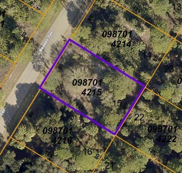 Beaver Terrace, North Port, FL 34286 (MLS #C7442063) :: Vacasa Real Estate