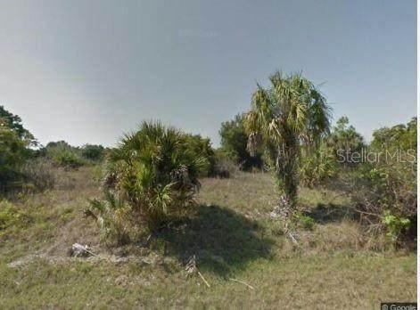 14287 Howard Avenue, Port Charlotte, FL 33953 (MLS #C7442180) :: Expert Advisors Group