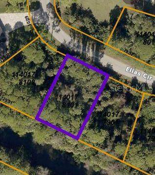 Elias Circle, North Port, FL 34288 (MLS #C7442582) :: Prestige Home Realty