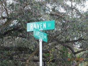 Raven Street, North Port, FL 34286 (MLS #C7442626) :: Southern Associates Realty LLC