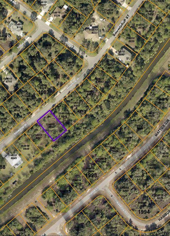 Snowdrop Street, North Port, FL 34288 (MLS #C7442832) :: Armel Real Estate
