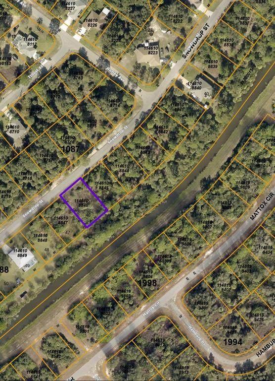 Snowdrop Street, North Port, FL 34288 (MLS #C7442832) :: Premier Home Experts