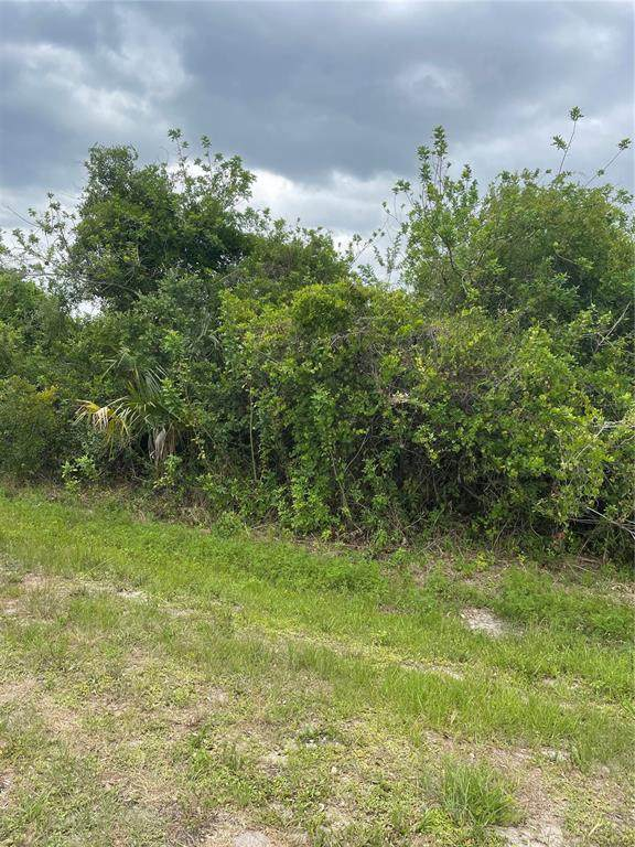 503 Pennfield Avenue, Lehigh Acres, FL 33974 (MLS #C7442891) :: Armel Real Estate