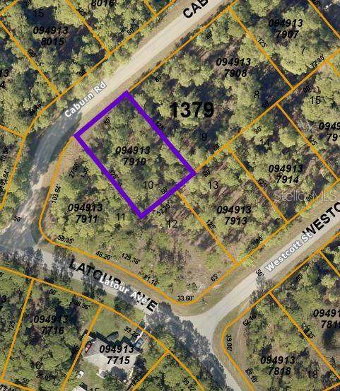 Caburn Road, North Port, FL 34291 (MLS #C7443234) :: Coldwell Banker Vanguard Realty