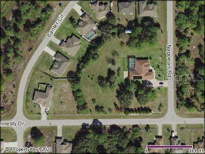 Amnesty Drive, North Port, FL 34288 (MLS #C7443483) :: Baird Realty Group