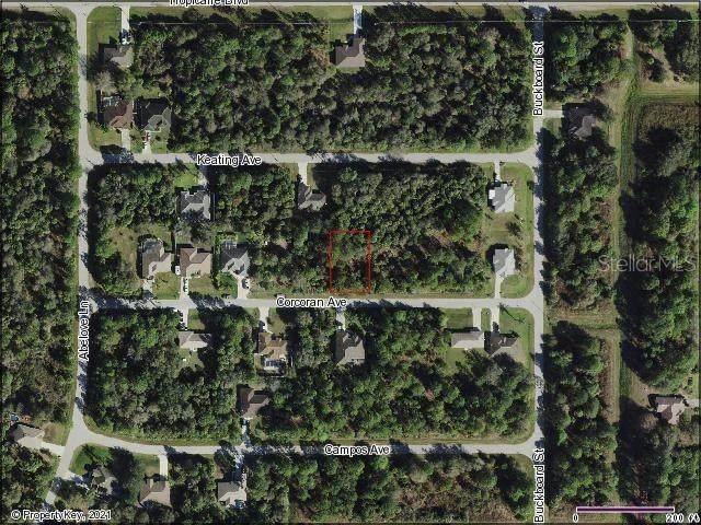 Corcoran Avenue, North Port, FL 34291 (MLS #C7443692) :: Coldwell Banker Vanguard Realty