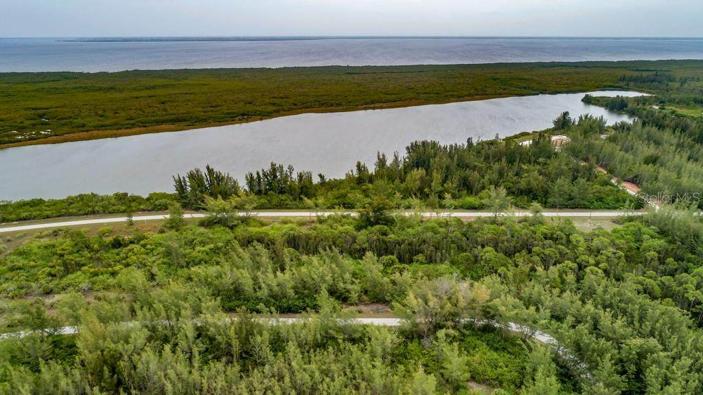 10559 Mangrove Circle - Photo 1