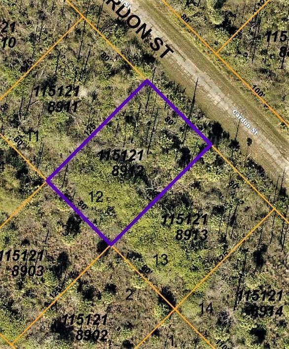 Cardon Street, North Port, FL 34288 (MLS #C7444724) :: Everlane Realty