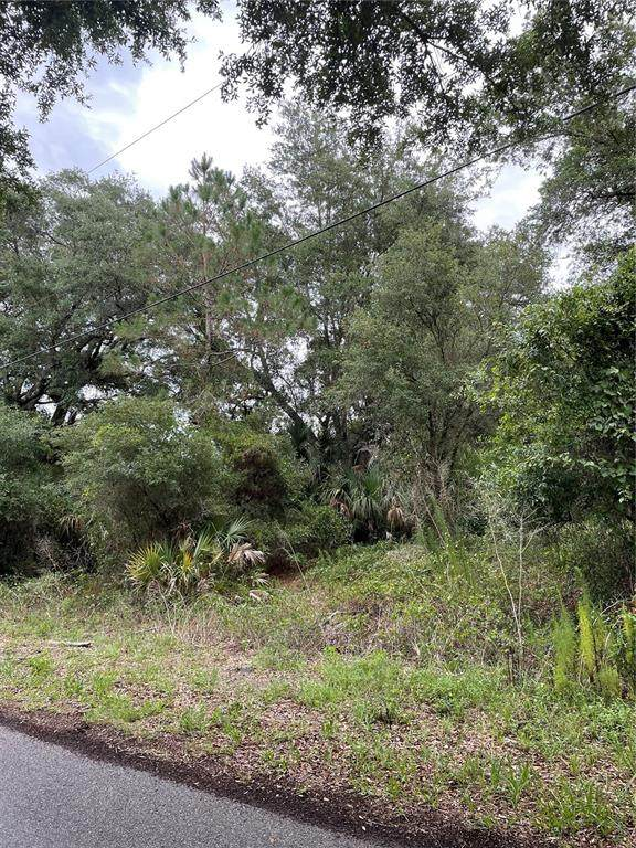 Imari Street, North Port, FL 34288 (MLS #C7444832) :: The Home Solutions Team | Keller Williams Realty New Tampa