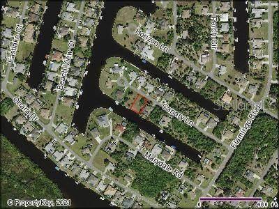17117 Canary Lane, Port Charlotte, FL 33948 (MLS #C7444849) :: Frankenstein Home Team