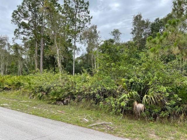 27413 N Twin Lakes Drive, Punta Gorda, FL 33955 (MLS #C7444939) :: The Paxton Group