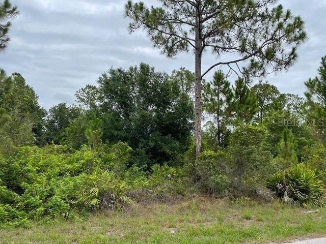 13530 Sulky Drive, Punta Gorda, FL 33955 (MLS #C7444993) :: The Paxton Group