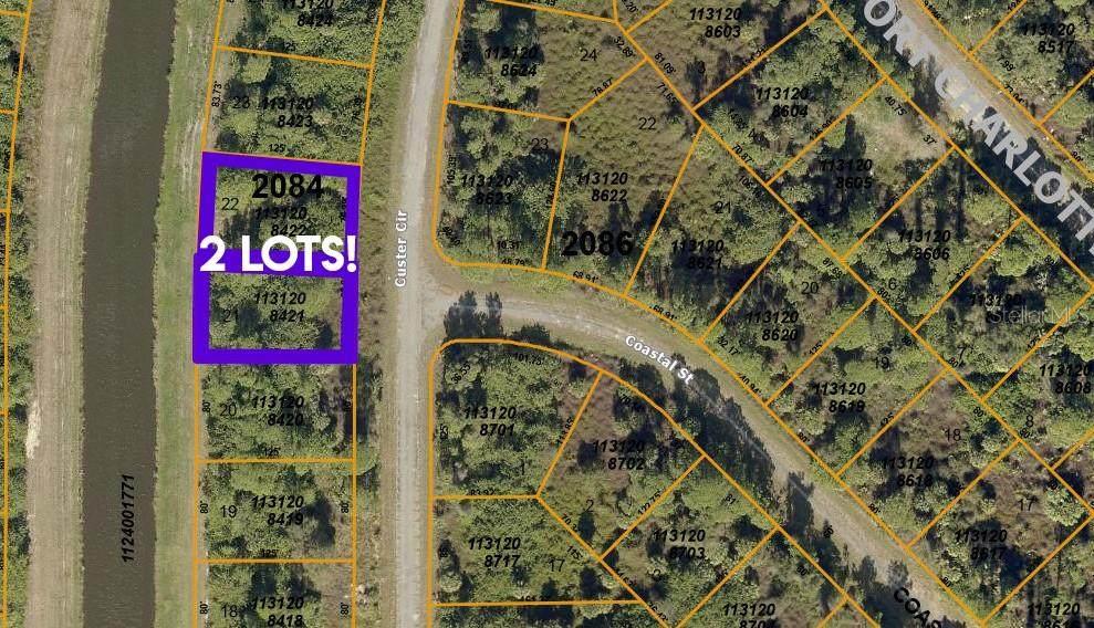 Lots 21 & 22 Custer Circle - Photo 1
