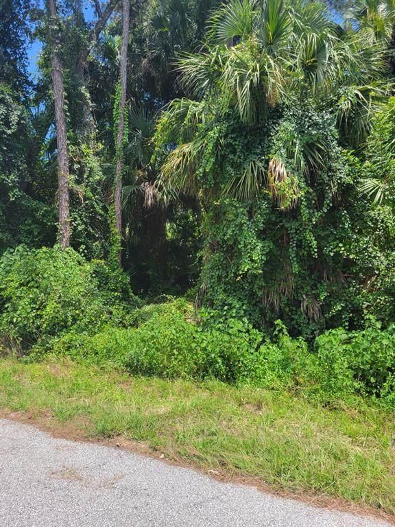 Elias Circle, North Port, FL 34288 (MLS #C7446399) :: Vacasa Real Estate