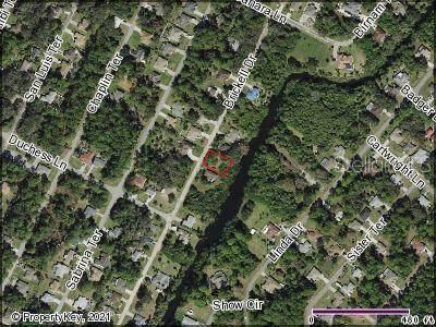 Brickell Drive, North Port, FL 34286 (MLS #C7446650) :: Baird Realty Group