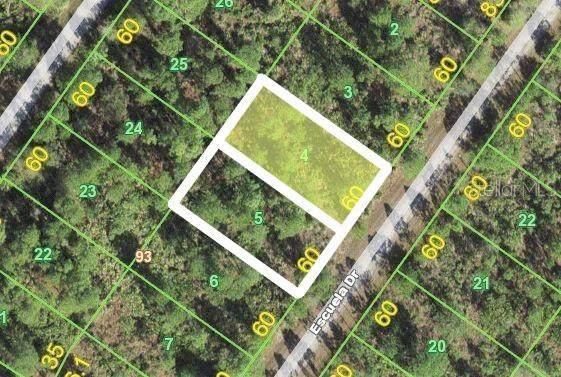 12229 & 12235 Escuela Drive, Punta Gorda, FL 33955 (MLS #C7446651) :: EXIT Gulf Coast Realty