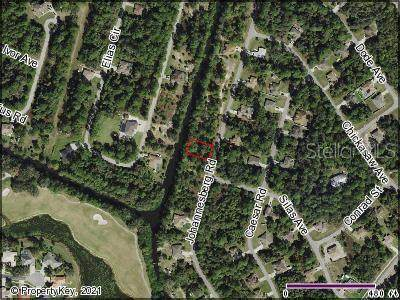 Johannesberg Road, North Port, FL 34288 (MLS #C7446742) :: MavRealty