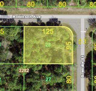 17493 Robinson Avenue, Port Charlotte, FL 33948 (MLS #C7447080) :: Everlane Realty