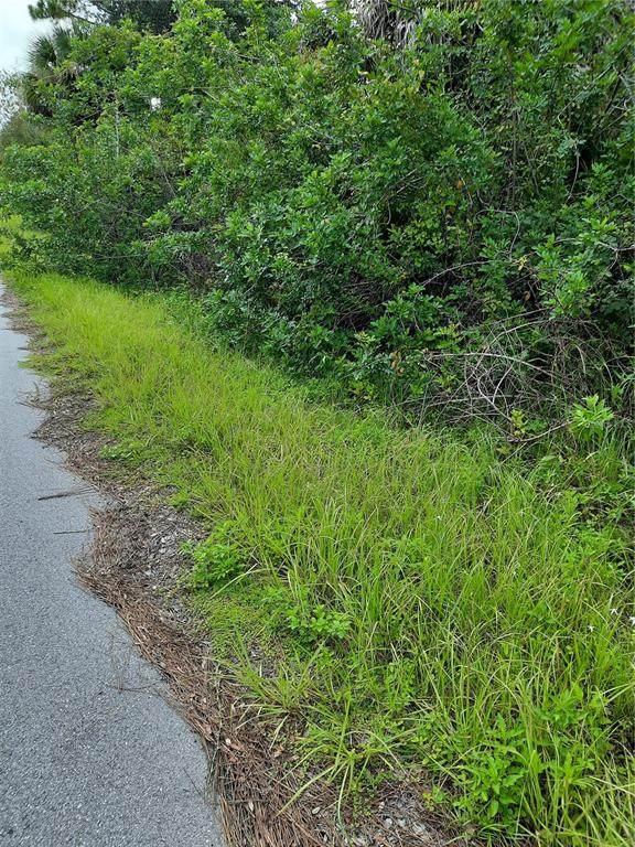 13156 Armitage Avenue, Port Charlotte, FL 33953 (MLS #C7447140) :: Godwin Realty Group