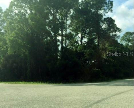 Caesar Road, North Port, FL 34288 (MLS #C7447404) :: Gate Arty & the Group - Keller Williams Realty Smart