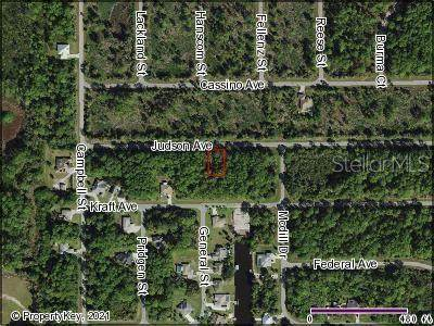 12081 Judson Avenue, Port Charlotte, FL 33953 (MLS #C7447986) :: Team Turner