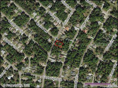 Prime Terrace, North Port, FL 34286 (MLS #C7448007) :: The Hustle and Heart Group