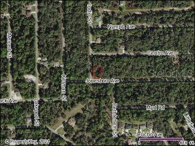Jonesboro Avenue, North Port, FL 34288 (MLS #C7448011) :: Gate Arty & the Group - Keller Williams Realty Smart
