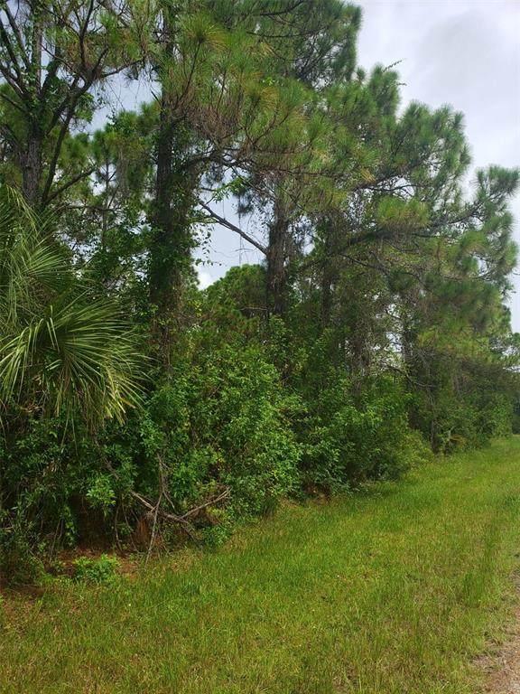 14324 Sanilac Avenue, Port Charlotte, FL 33981 (MLS #C7448248) :: Sarasota Property Group at NextHome Excellence