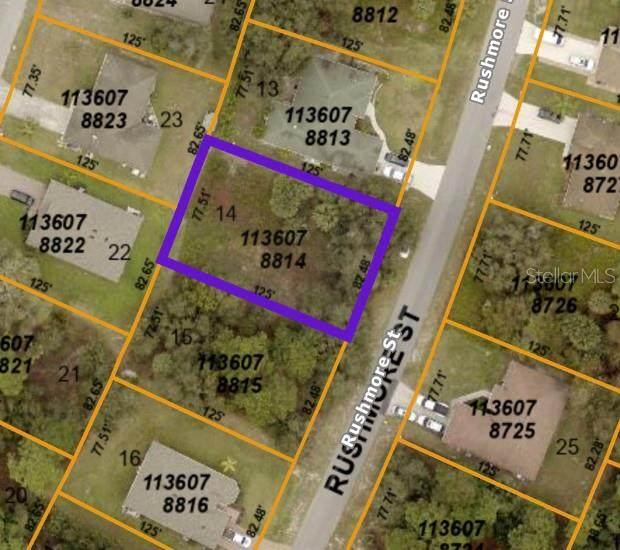 Rushmore Street, North Port, FL 34288 (MLS #C7448475) :: Team Turner