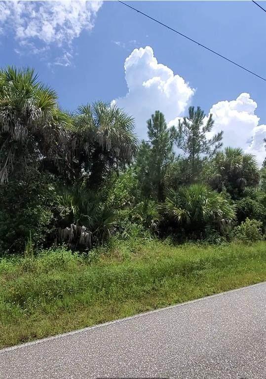 5464 Jennings Boulevard, Port Charlotte, FL 33981 (MLS #C7448939) :: GO Realty