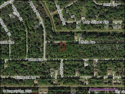 Alfalfa Avenue, North Port, FL 34291 (MLS #C7449152) :: Premium Properties Real Estate Services
