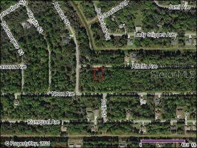 Alfalfa Avenue, North Port, FL 34291 (MLS #C7449153) :: Premium Properties Real Estate Services